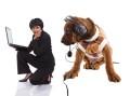 Hunde in den Medien